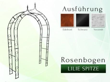 Rosenbogen HOLLAND mit Lilie-Spitze 2,00 m gartenbogen, rosenaule, rosenbogen eisen, rosenbogen verzinkt, rosenbogen schwarz...