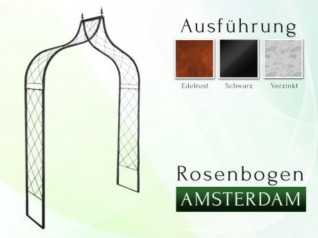 Rosenbogen AMSTERDAM
