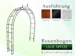 Rosenbogen HOLLAND mit Lilie-Spitze 2,20 m gartenbogen, rosenaule, rosenbogen eisen, rosenbogen verzinkt, rosenbogen schwarz...