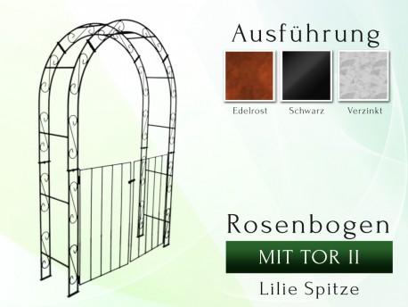 Rosenbogen HOLLAND Rund mit Tor II B 1,40 m Tor höhe 1,10 m gartenbogen, rosenaule, rosenbogen eisen, rosenbogen verzinkt, ...