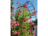 Rosenbogen Pergola Metallrosenbogen Gartenbogen Rosensäule mit Lilie-Spitze 2,40 m