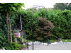 Rosenbogen HOLLAND Rund 2,20 m Eisen Massiv Rosenbogen für deinen Garten, erhältlich in drei Varianten: Rost, Verzinkt oder...