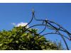 Rosenbogen LOSLAU B 1,00 Eisen Massiv Rosenbogen für deinen Garten, erhältlich in drei Varianten: Rost, Verzinkt oder Schwarz