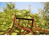 Rosenbogen BRESLAU Eisen Massiv Rosenbogen für deinen Garten, erhältlich in drei Varianten: Rost, Verzinkt oder Schwarz