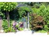 Rosenbogen Paris Rund Eisen Massiv Rosenbogen für deinen Garten, erhältlich in drei Varianten: Rost, Verzinkt oder Schwarz