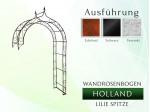Wandrosenbogen HOLLAND Lilie-Spitze
